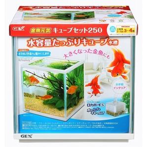 金魚元気 キューブセット250