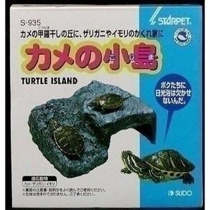 スドー カメの小島