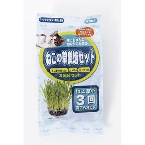 [アラタ] ねこの草栽培セット 3回分