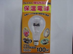 ヒヨコ保温電球 100W 硬質ガラス